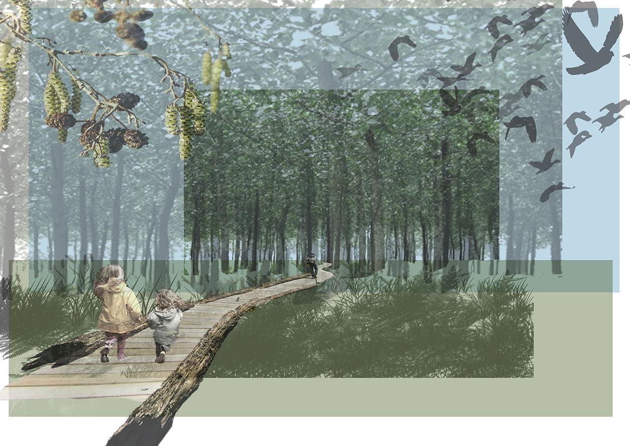 Landscape Reclamation