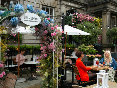 Belvedere Organic Infusions Terrace arrives in the capital