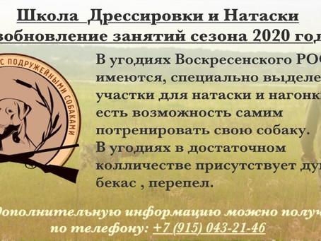 Возобновление занятий сезона 2020 года