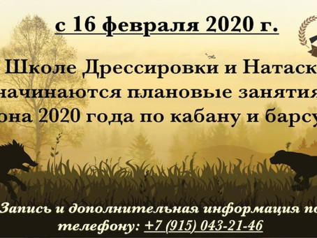 Начало плановых занятий сезона 2020 года.