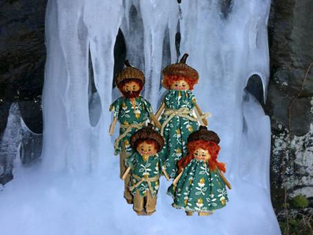 The Acorn Elves Visit Shenandoah NP