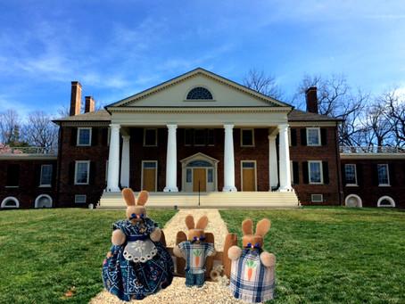 Clothespin Bunnies Visit Montpelier, VA