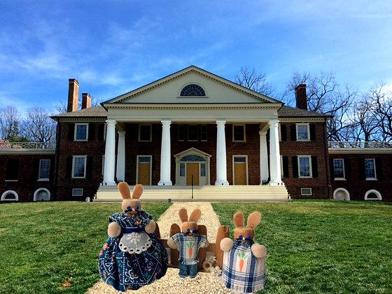 Spring Bunny Set