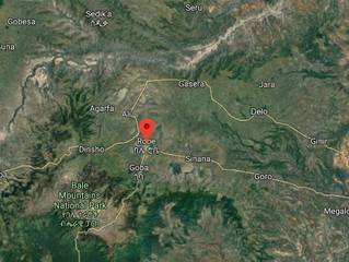 Security crisis unabated as radical qeerroo unleash terror in Oromo region of Ethiopia