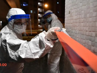 https://www.theguardian.com/world/2020/feb/11/coronavirus-expert-warns-infection-could-reach-60-of-w