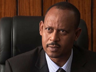 Ethiopia successfully tackling drought: Commission