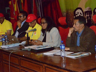 TPLF terminated twelve central committee members