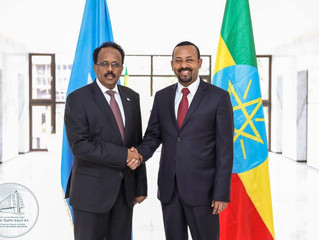 President Farmajo's Election: A Brief Hiatus or Hype in Ethiopia's Regional Hegemonic Ambition