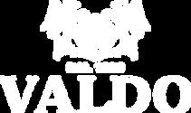 valdo_logo_2021_whiteDatový zdroj 4.png
