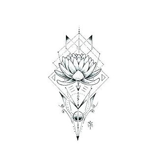 draw-lotus-flower-drawing-of-lotus-flowe