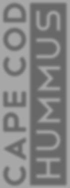 CCH logo draft 3 font telegrafico devian