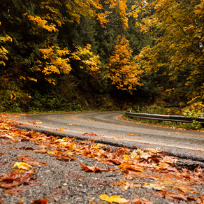 Fall Drive through Whatcom County