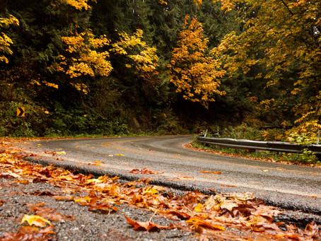 Fall Drive through Whatcom County
