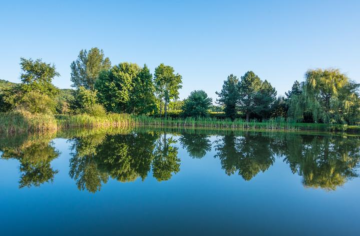 Le bleu du lac