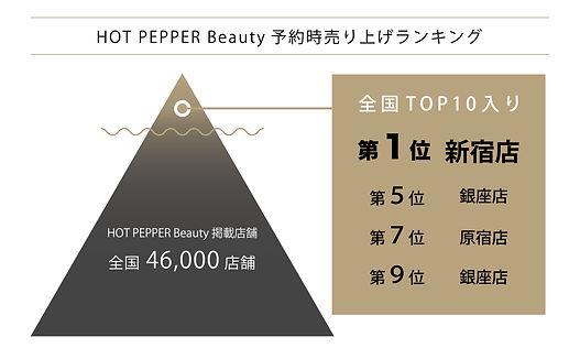 HPB予約時売り上げランキング (ピラミッド図).jpg