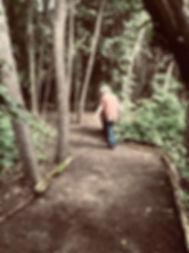 healingforest3.jpg