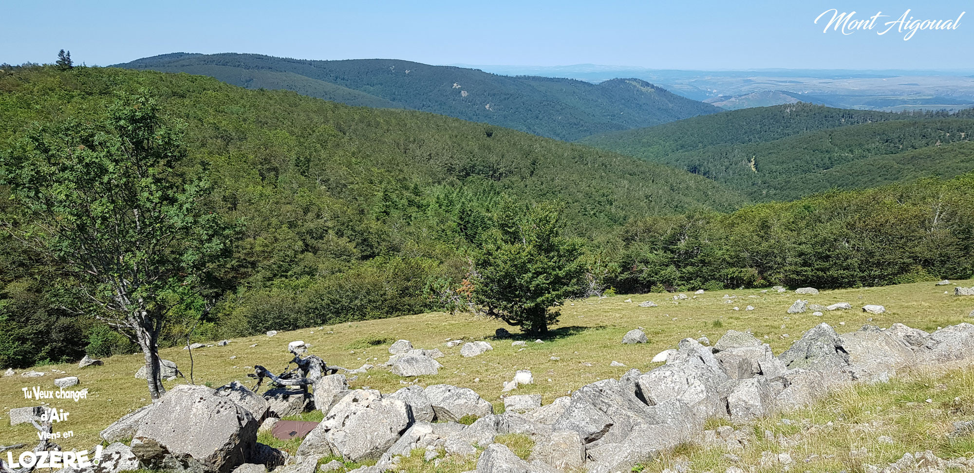 Mont-Aigoual.jpg