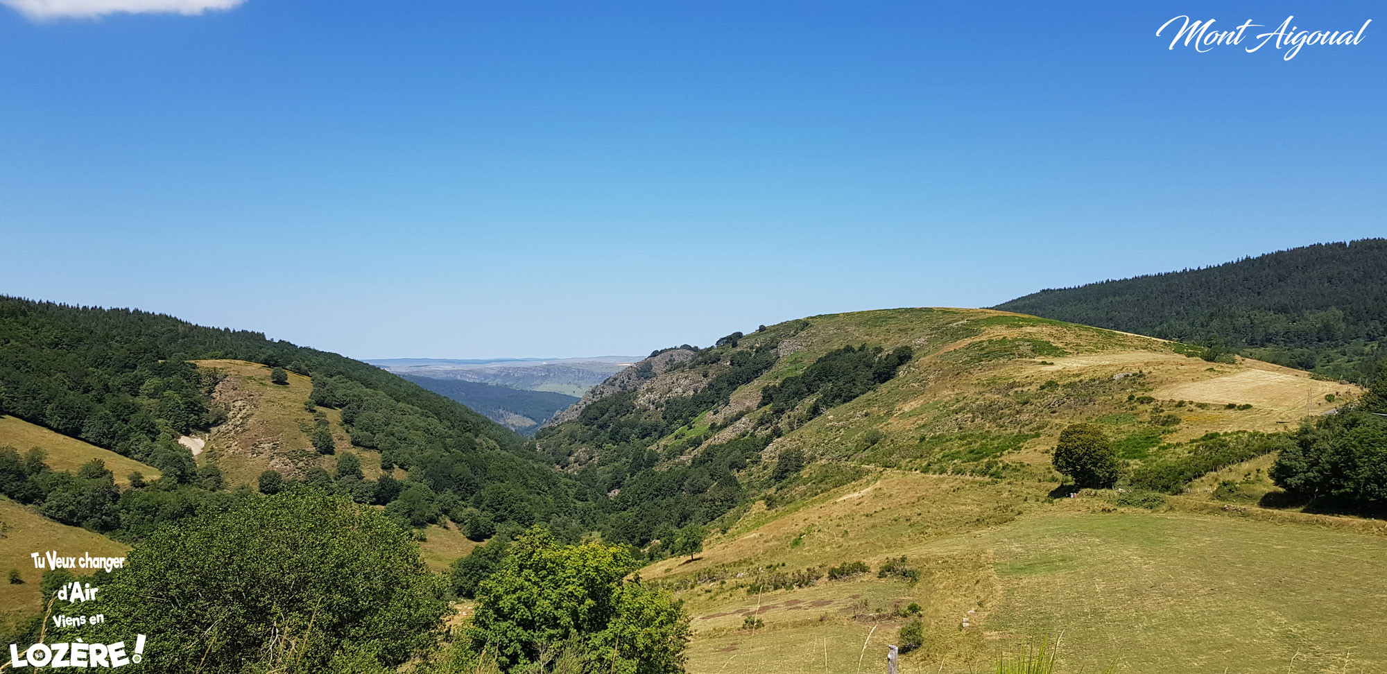 Mont-Aigoual-4.jpg