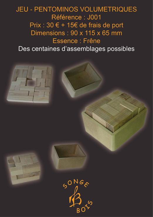 PENTOMINOS VOLUMETRIQUES J001 FRENE.jpg