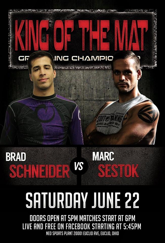 Brad Schneider vs Marc Sestok.jpg