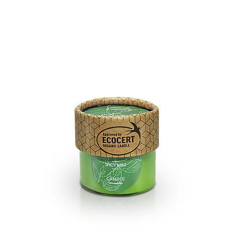 Small candle Spicy mint