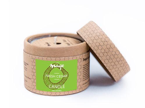 Fresh Cedar / Cèdre Frais  (M)