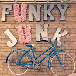 Funky Junk Bike