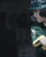 for_website_04_baseball_cr.png