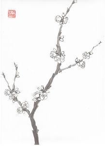 sumi-e Kirchblüten Japantusche
