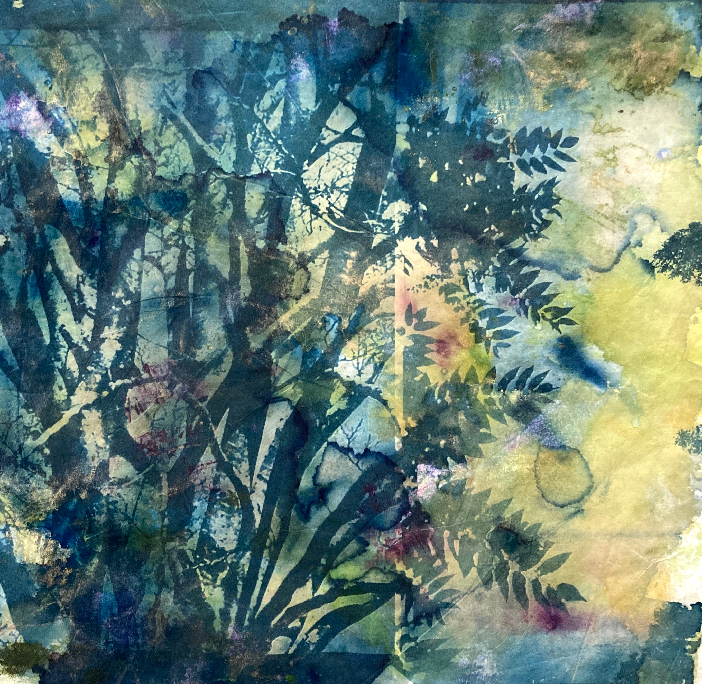 Cyanotypes from Nature