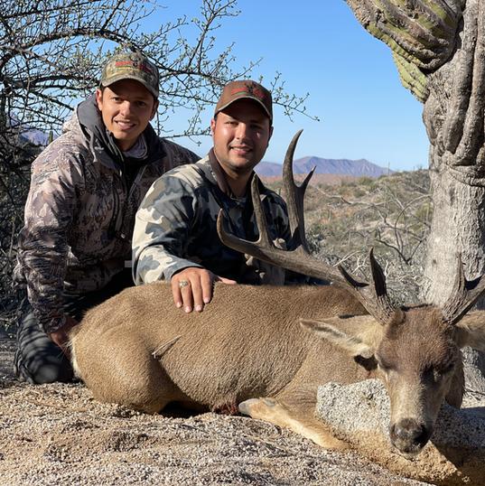 Sheldoni Mule Deer 2020-2021