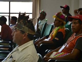 A questão indígena no oeste do Paraná e a reconstrução do território Avá-Guarani.