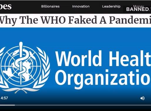 Mainstreamová média i vědci odhalují globální hoax jménem COVID-19