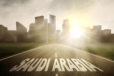 GCC-Data-Book-Saudi.jpg