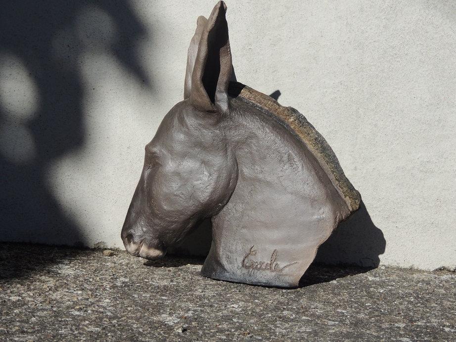 Tête de mule enfumée engobe