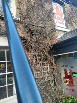 Window Cleaning | Claverley