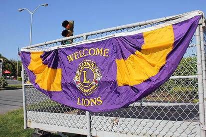 Lions 5 small size banner.JPG