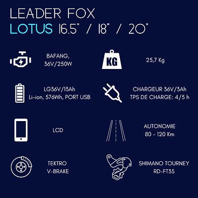 Leader fox arimo 27.5_ ou 29_ (2).jpg