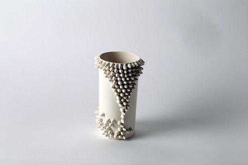 Spicky vase