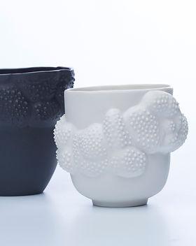 Hermine Doublon-Product design- Propagul