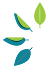 Logo - Leaves.png