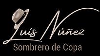 Logo Luis Núñez - Sombrero de Copa