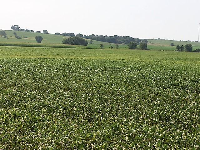 Photo of Hancock, Iowa Property