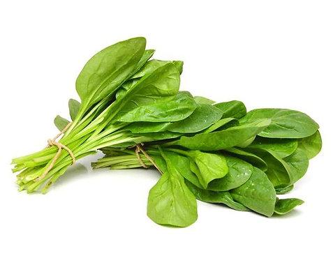 Spinach【3bdl】