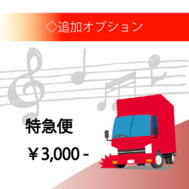 【追加オプション】特急便<¥3,000>