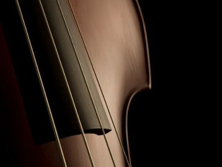 Where to buy a new Double Bass in Singapore