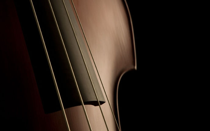 Online Double Bass Lessons