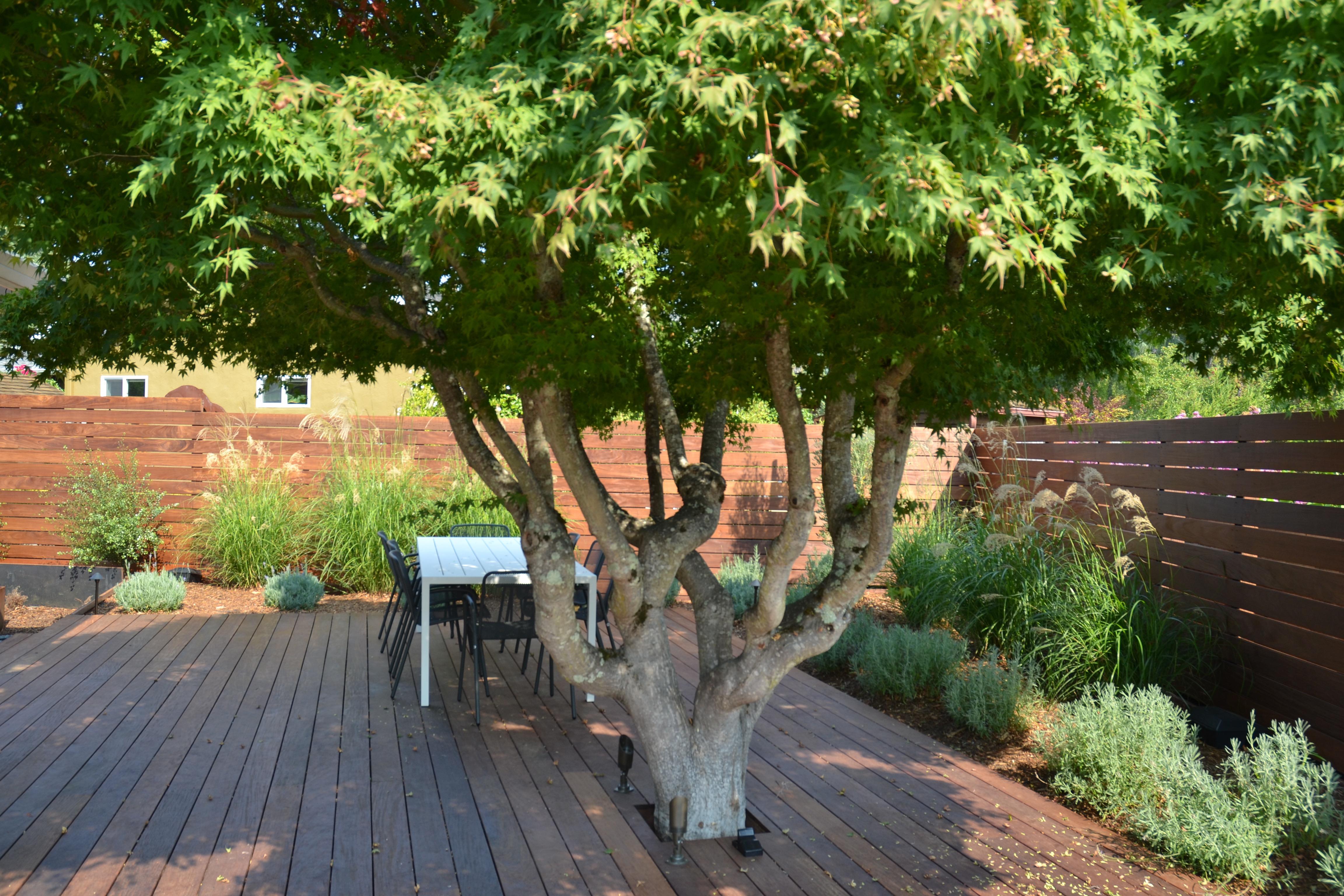 Tanbark Terrace