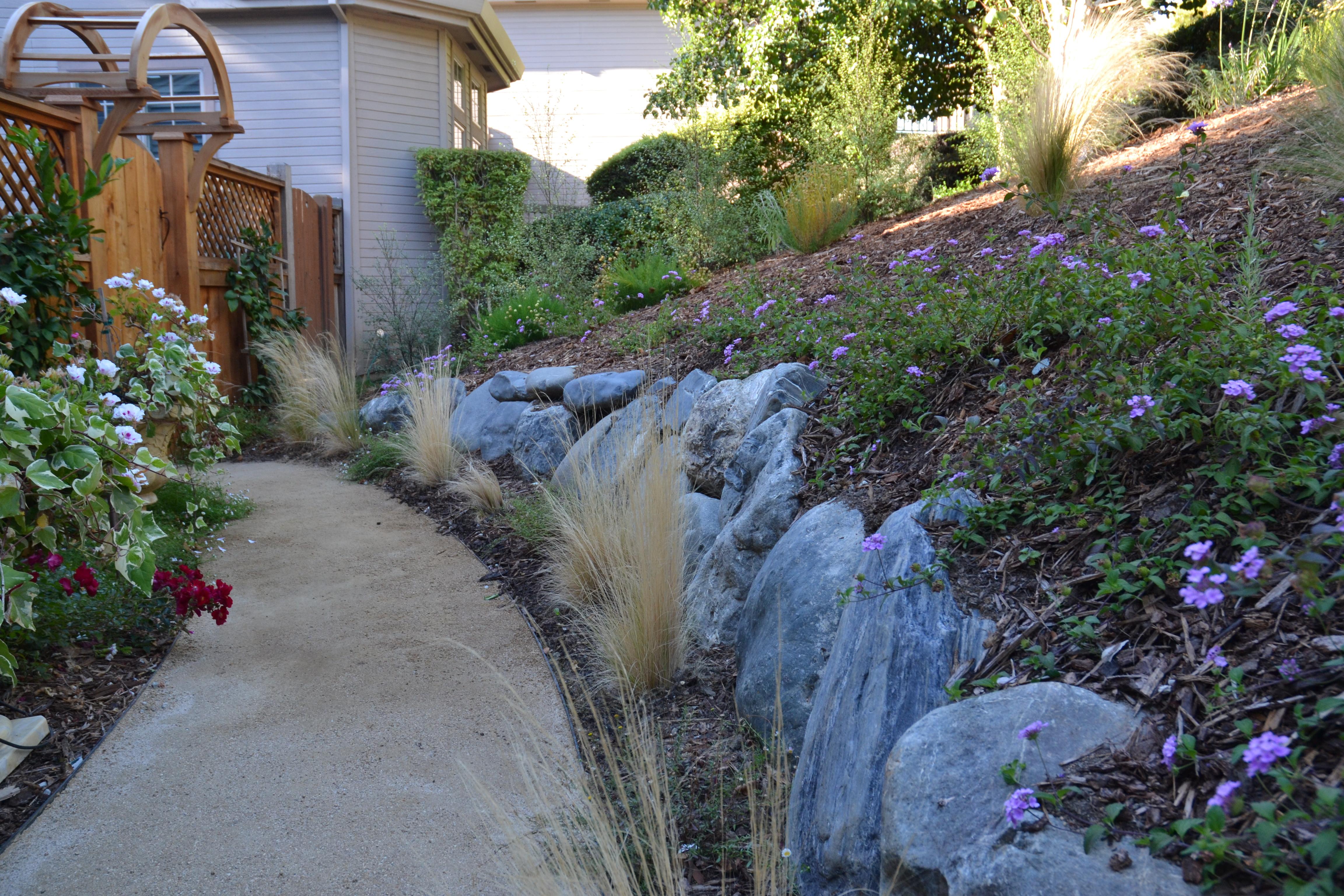 Rancho Drive, Tiburon