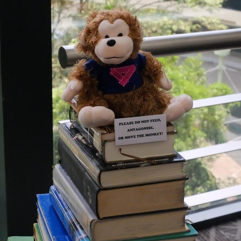 Winston the book monkey